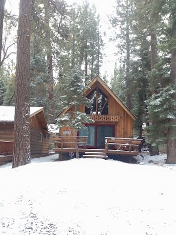 Snuggle bear cabin cabins for rent in big bear lake for Cabins big bear lake ca