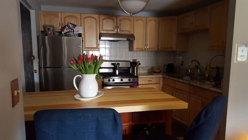 Clean and cozy Two bedroom close to Boston. - Quincy - Apartamento