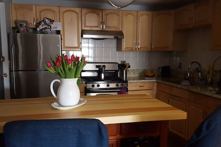 Clean and cozy Two bedroom close to Boston. - 昆西(Quincy) - 公寓