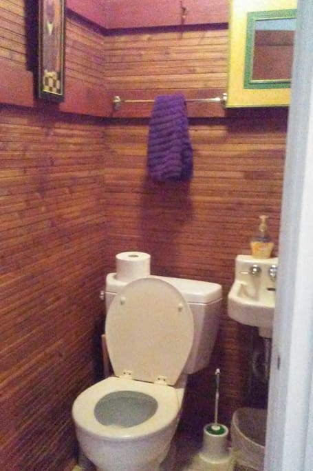 One of a kind toilet cubby on main floor.