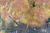 guardando in basso dalla finestra della Mansardina