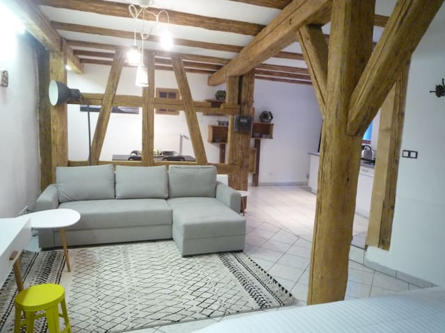 Superbe studio - lit KING SIZE - maison alsacienne - Colmar - House