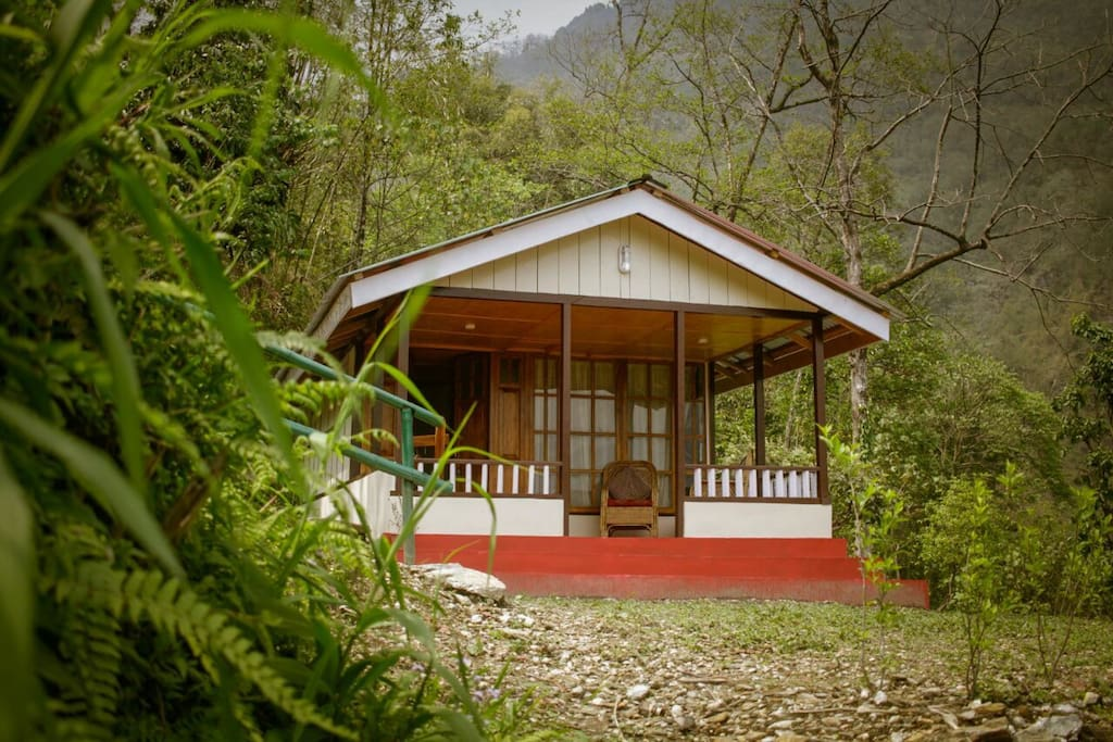 Walnut Cottage located amidst the lush green forest.