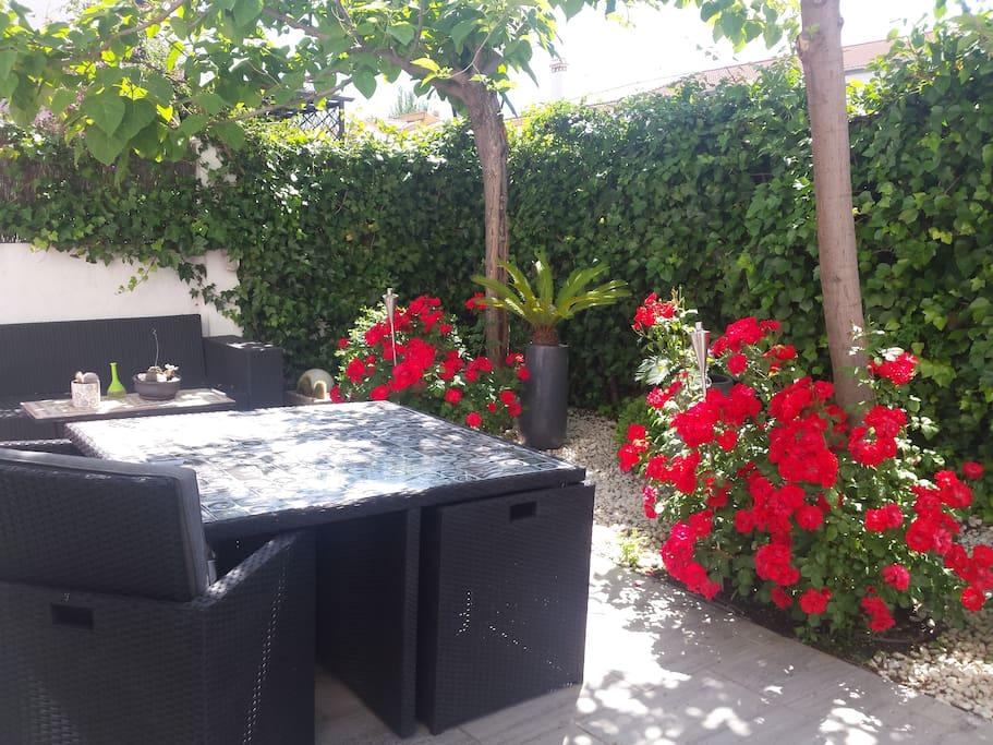 Planta baja - Jardín  exterior