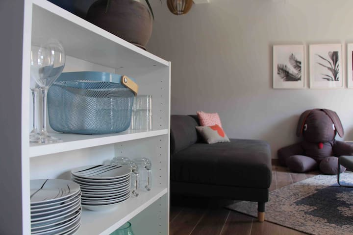 Logement climatisé de 60m2 comprenant une grande pièce à vivre avec cuisine, une chambre et une salle de douche.