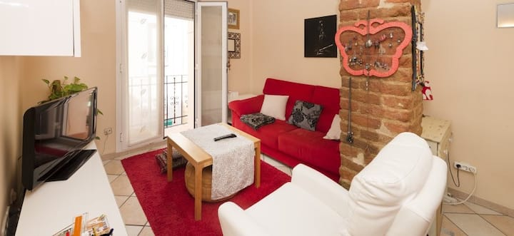 Bright and central Apartment Goya