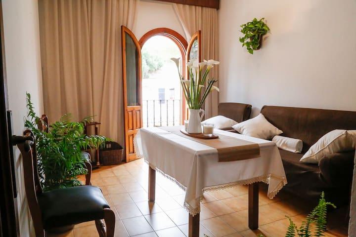 Apartamento CENTRICO, LUMINOSO(75m2)+TERRAZA(75m2) - Arcos de la Frontera - Apartment
