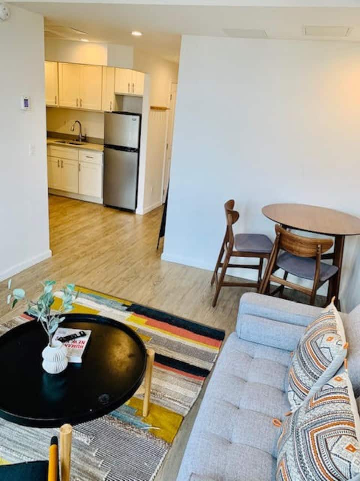 Spacious 1 bedroom Apartment in Little Italy