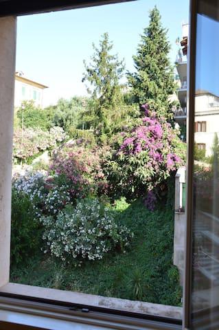Dal salone potrete deliziarvi con immagini ricche di colori di piante che si trovano lungo la scalinata di fronte alla casa. Piacevoli ed avvolgenti aromi di bouganville ed oleandro renderanno ogni istante un incanto.