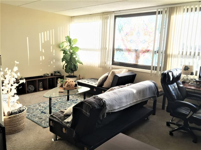 Private Room for COMLEX/USMLE/Vacation near O'Hare - 芝加哥 - 公寓