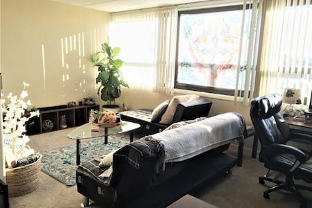 Private Room for COMLEX/USMLE/Vacation near O'Hare - Chicago - Wohnung