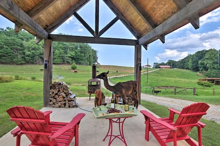 Cabin on Working Alpaca Ranch, Near Wineries!