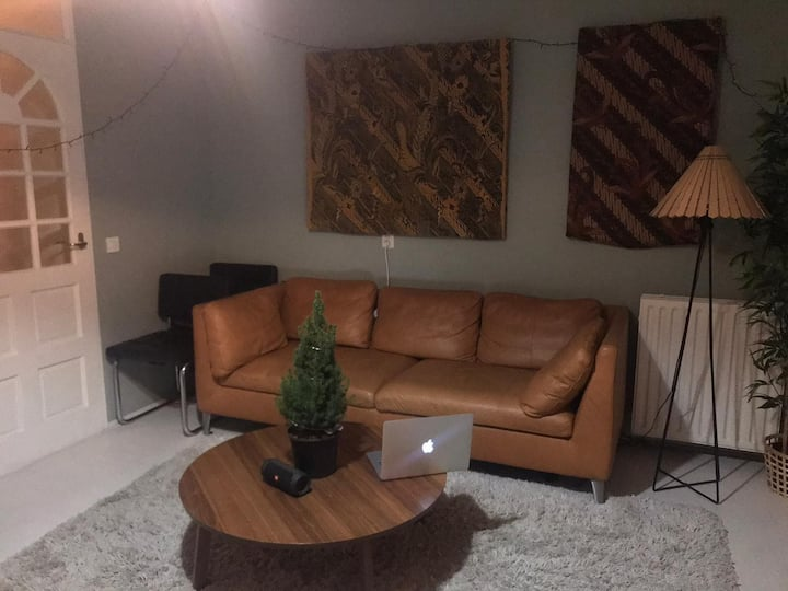 Big Room in Cozy Apartment - Great Location!