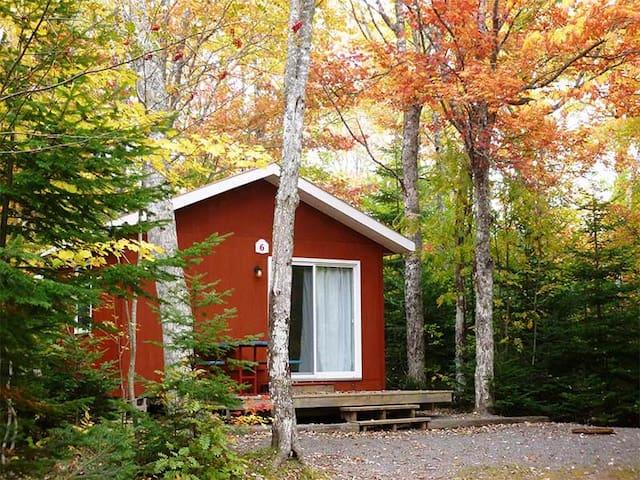 Cozy Camp Cabin #7