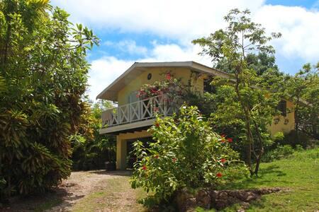 Villa Lodge Apartment - Gibbes - Pis