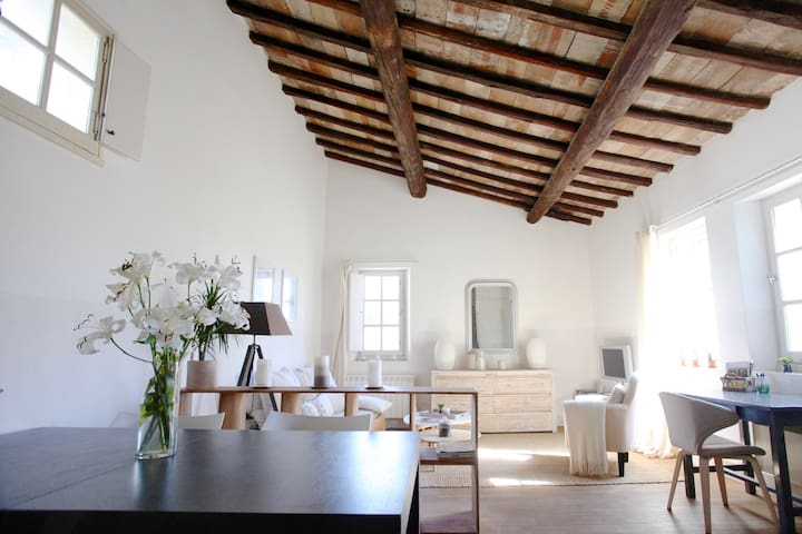 Magnificent Apartment in the heart of Uzès - Uzès - Lägenhet