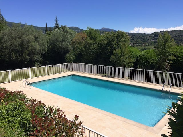 Provençal villa pool, 10 m of Cannes and beaches 6