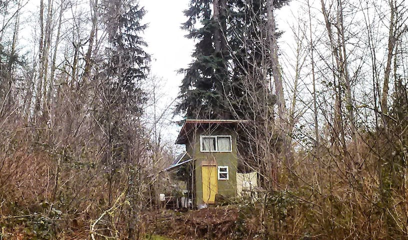 Green Cabin in the Woods - Kalama - Chatka