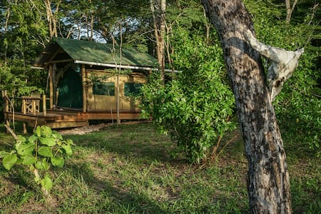 Safari Tent in Miseni eco-campsite - Gongo - Tenda