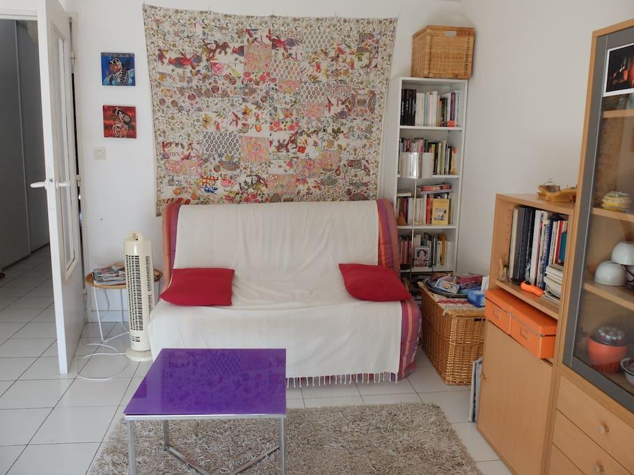 Grand salon, très clair, confortable. canapé lit 2 Personnes.
