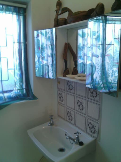 Small but light and clean shower and loo
