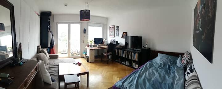 Sonniges Balkonzimmer in Neckarnähe