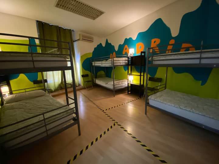 Dormitorio Compartido de 8 Camas (4 Literas)