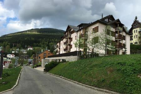 Apartmán ve Špindlerově Mlýně, dům DALIBOR 1 - Špindlerův Mlýn