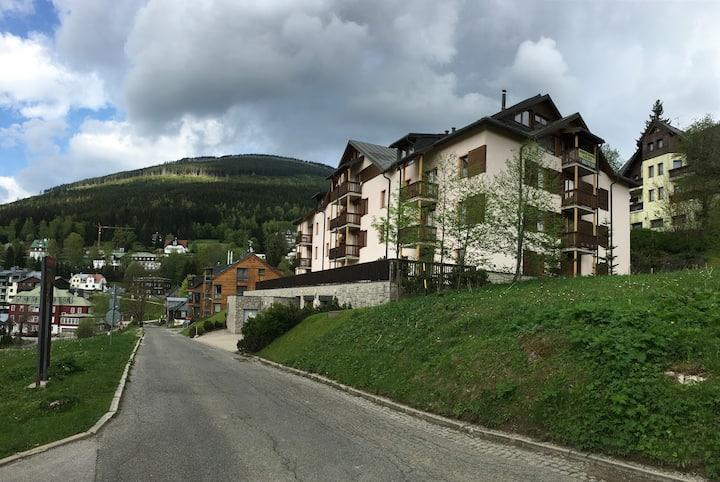 Nice apartment in Špindlerův Mlýn, house DALIBOR 1