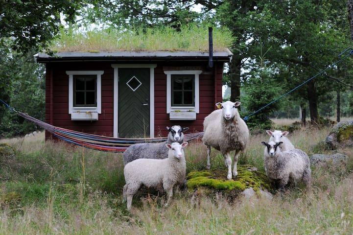 Bara Älska stuga i vildmarksboende - Hölseböke - Stuga