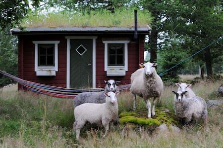 Bara Älska stuga i vildmarksboende - Hölseböke - Sommerhus/hytte