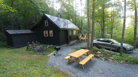 Beautiful Cabin with detached Studio in the woods!