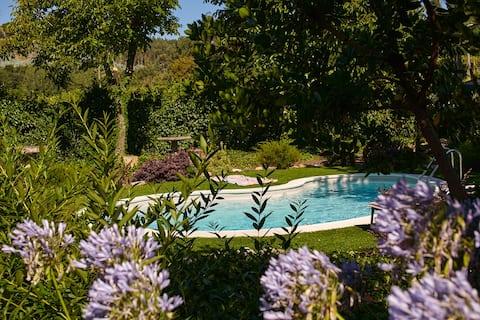 Casa de Louredo - turystyka wiejska - Yellow Suite