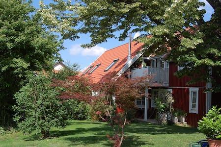 Schwedenhaus in Freiburg - Freiburg im Breisgau