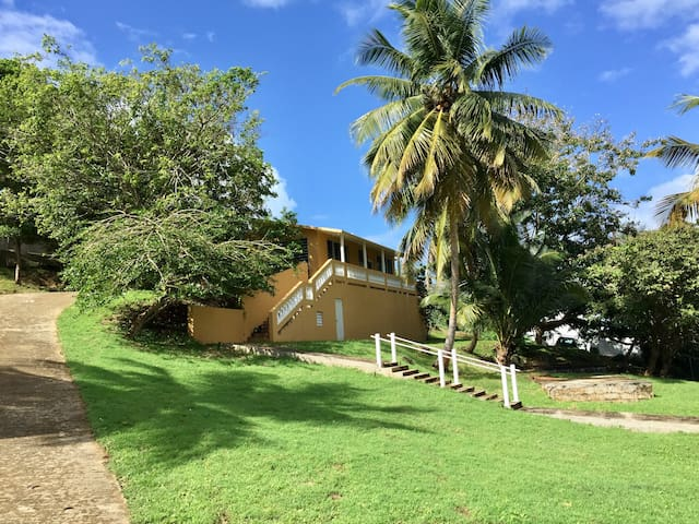 Hilltop house steps to the beach - Vieques, Vieques, Puerto Rico - Hus