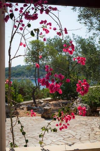 Villa Agave in Paxos - Gaios - Hus