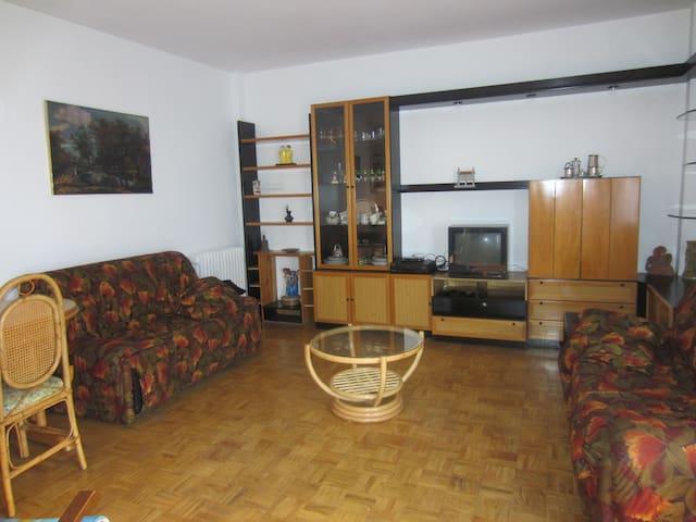 Apartamento económico céntrico, cómodo y tranquilo - León - Apartemen