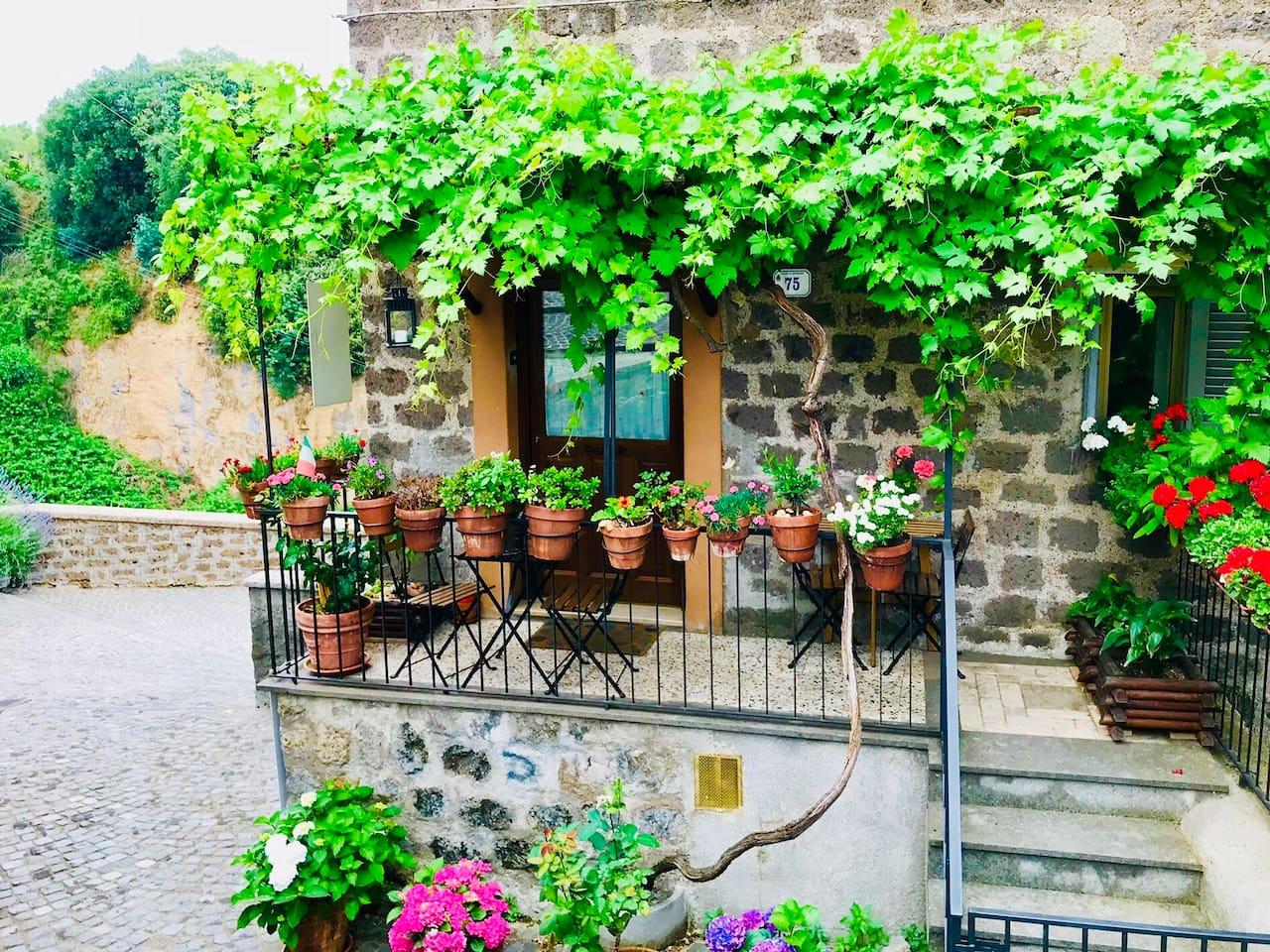 Il patio et ingresso