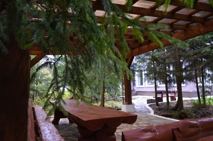 веранда барбекю в лесу