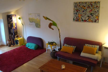 grand appartement plein centre - Limoux - Wohnung