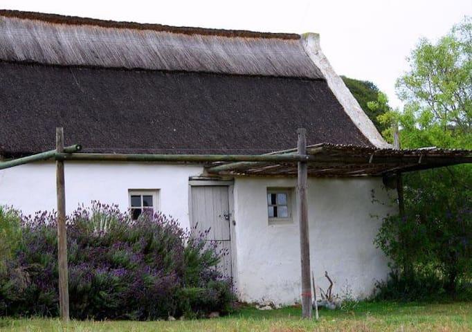 Couples' Cottage, Vermaaklikheid Olive Farm