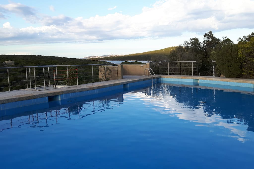 la piscina/the pool