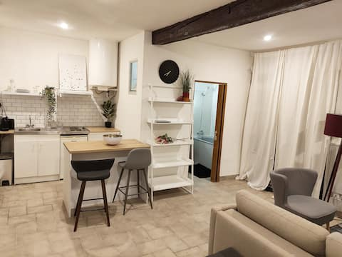 Bordeaux : grand studio cosy avec cour privative