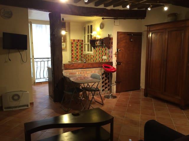 STUDIO PROVENCAL TOURRETTES SUR LOUP - Tourrettes-sur-Loup - Lägenhet