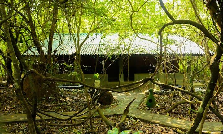 Akein Nature Superior Cottage Sigiriya