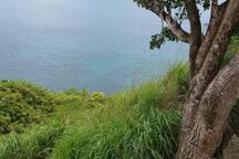 Pigeon Island..