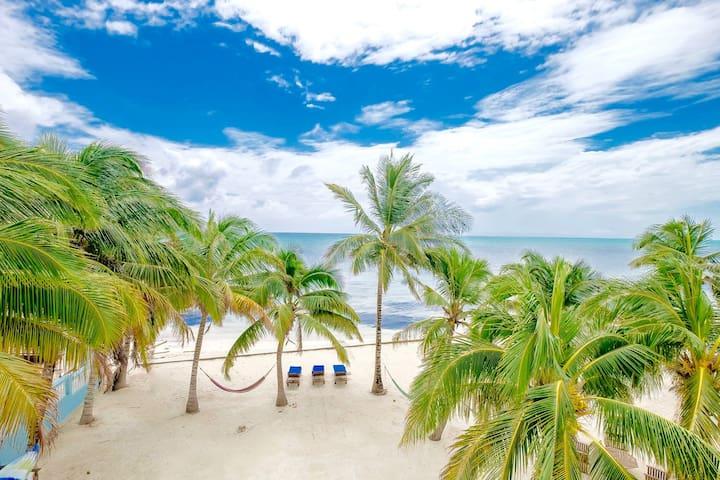 C3: Big balcony, kayaks, bikes, beach, pool &more!