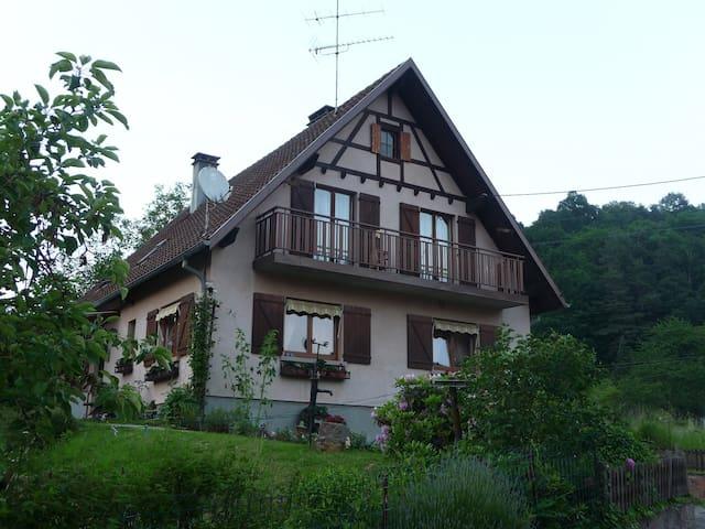 Gîte 5 pers. + bébé au coeur de l'Alsace - Saint-Martin - Appartement