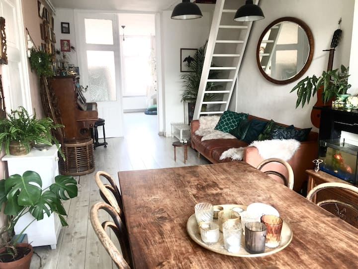 Lovely bright apartment near Vondelpark