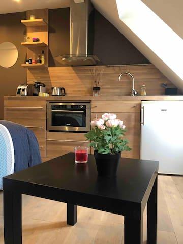 Strasbourg Studio quartier Contades/Orangerie